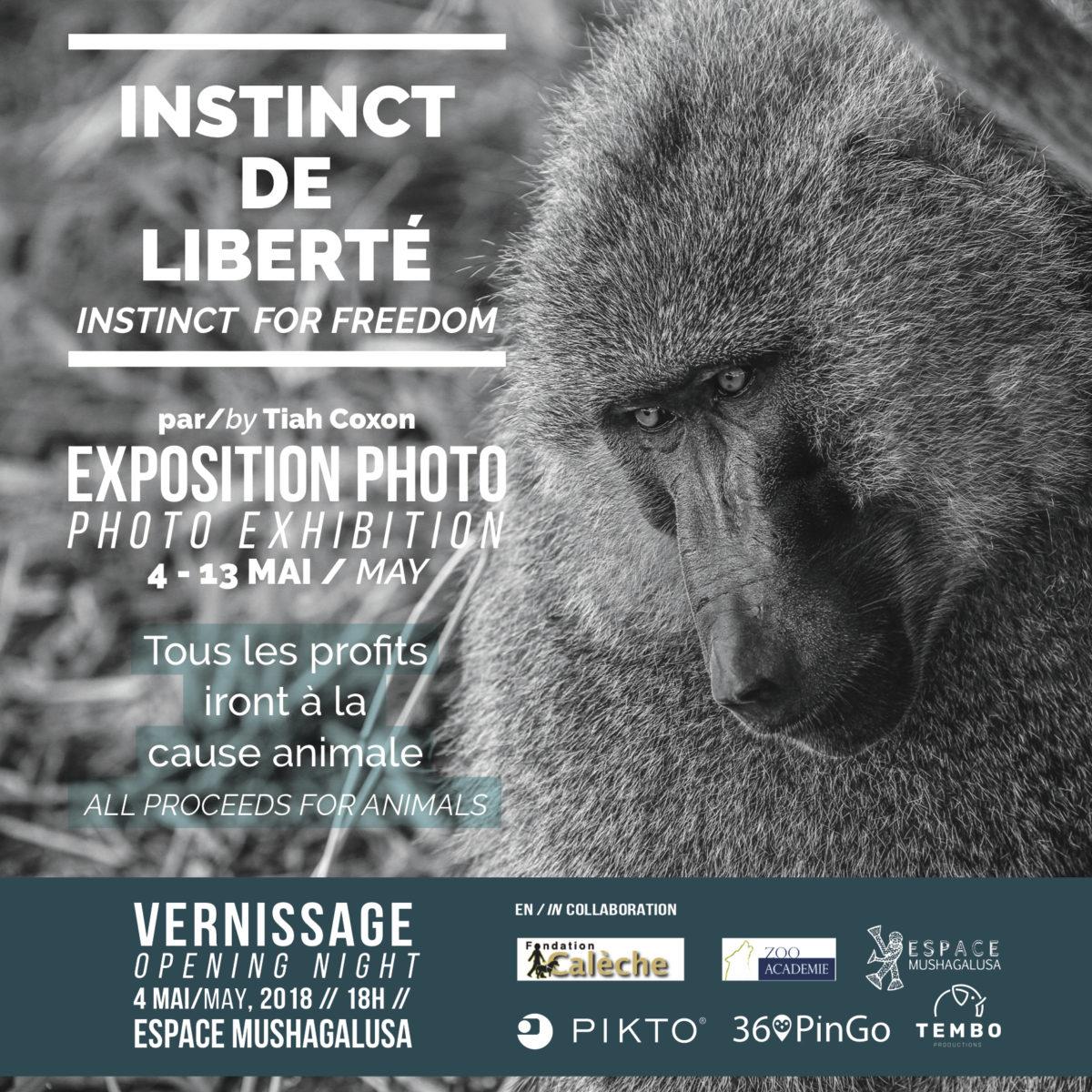 Instinct de liberté, une exposition photo à voir à l'Espace Mushagalusa